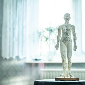 Meridian doll for Acupuncture